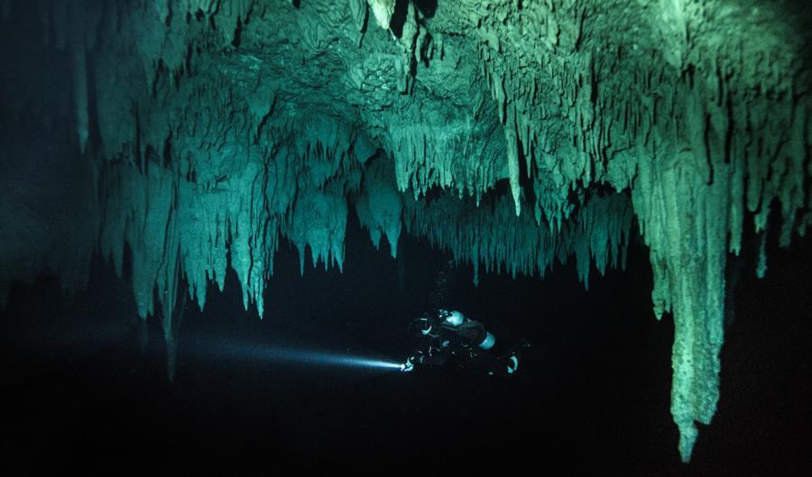 El Pit Cenote - El Pit - Halocline