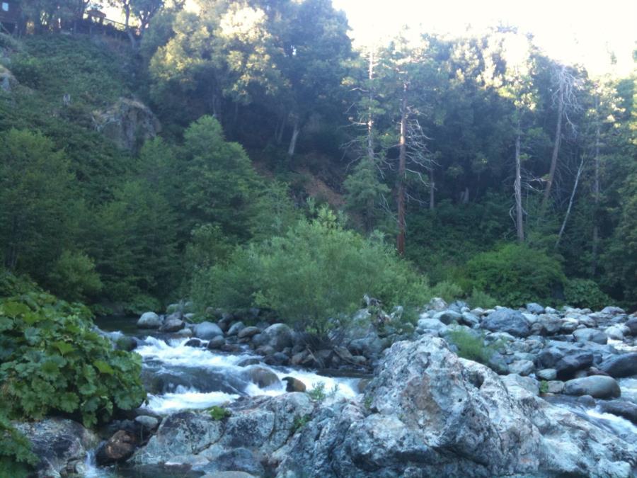 Sierra City North Fork Yuba River - North Fork Yuba River