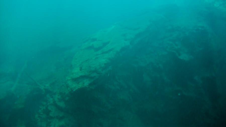 Big Blue Spring (Wacissa Spring Group) - Large fallen slab
