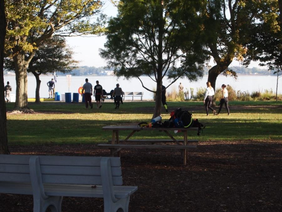 Maclearie Park, Shark River - Looking from parking thru picnic area to entry