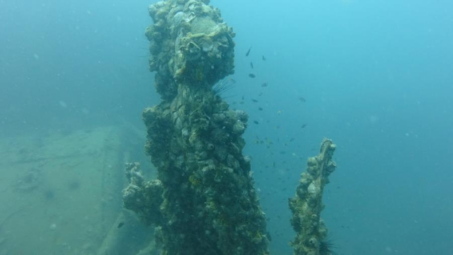 Katori Maru - wreck