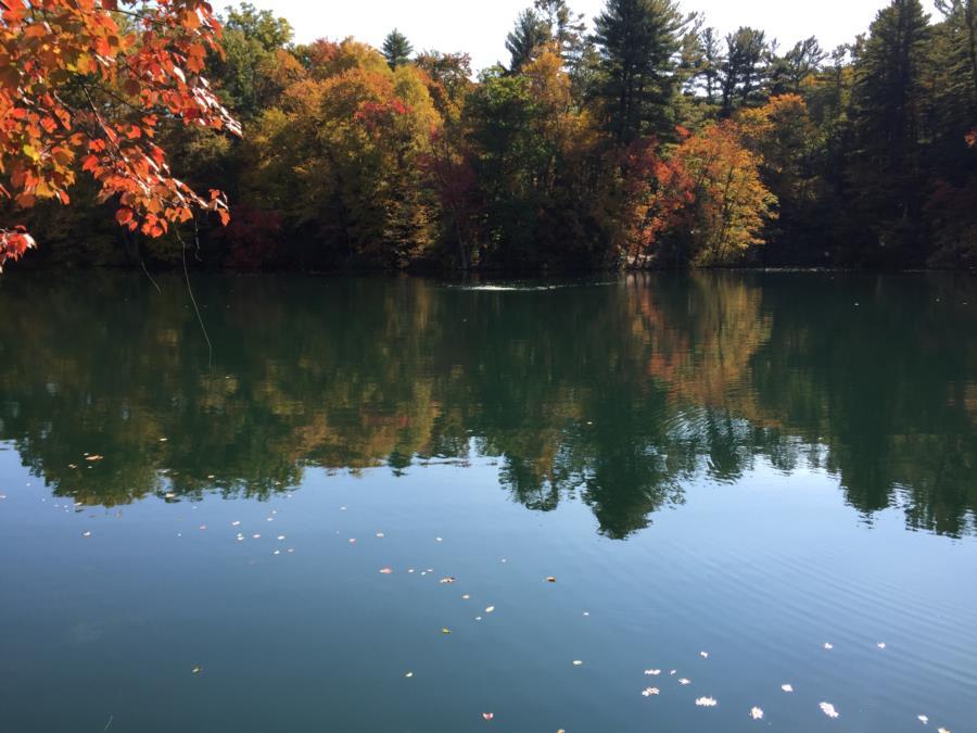 Fuller Lake - Shot of lake.