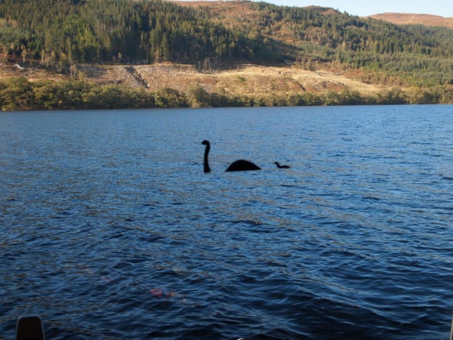Loch Ness - Nessie sticker on boat window
