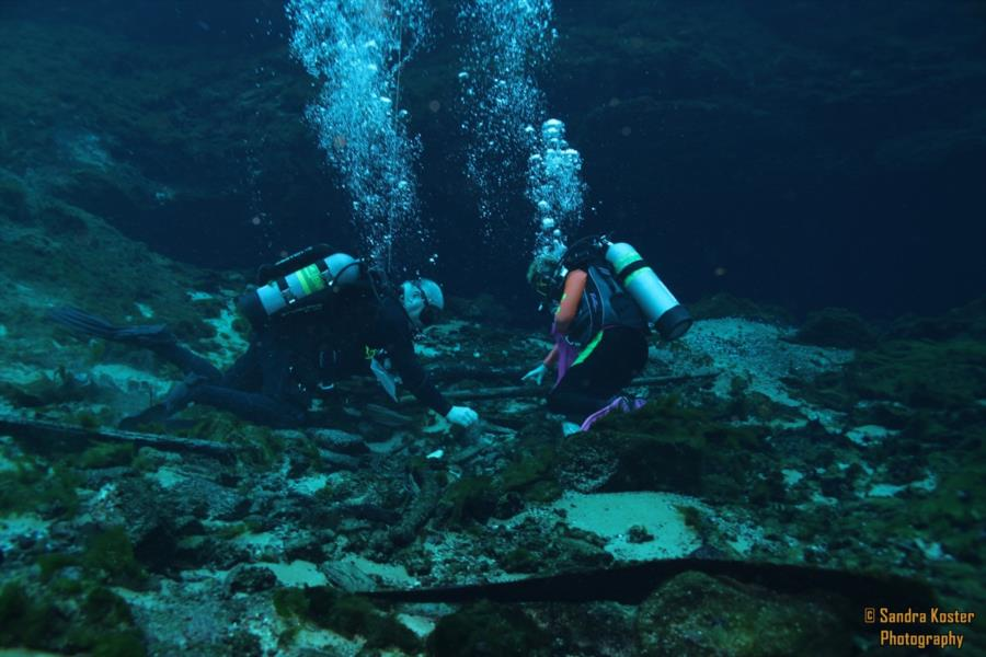 Silver Springs State Park - Divers collecting debris and human trash from the bottom of the spring.