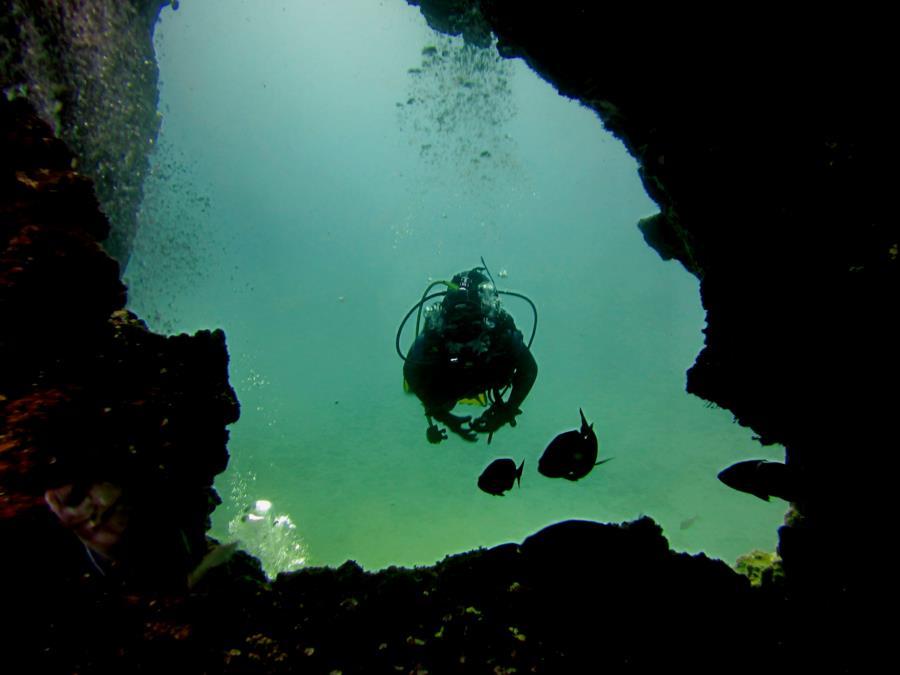 Montaña Amarilla Swim Through - Diver in Swim through