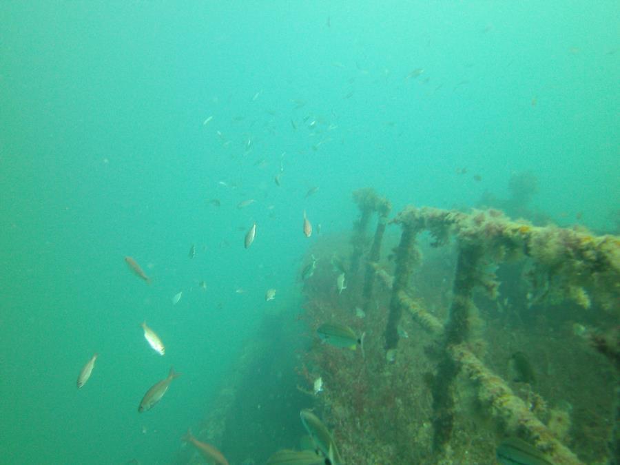 Charleston Tug Wreck - Towards the bow