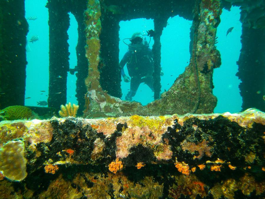 Roequot Wreck - Superstructure with swimthrough