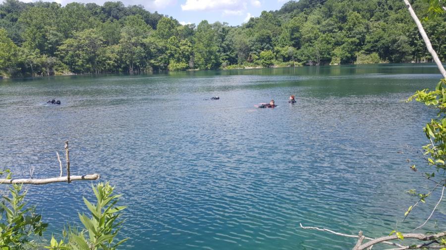 Juturna Springs - Surface of water at Juturna Springs in Maryland