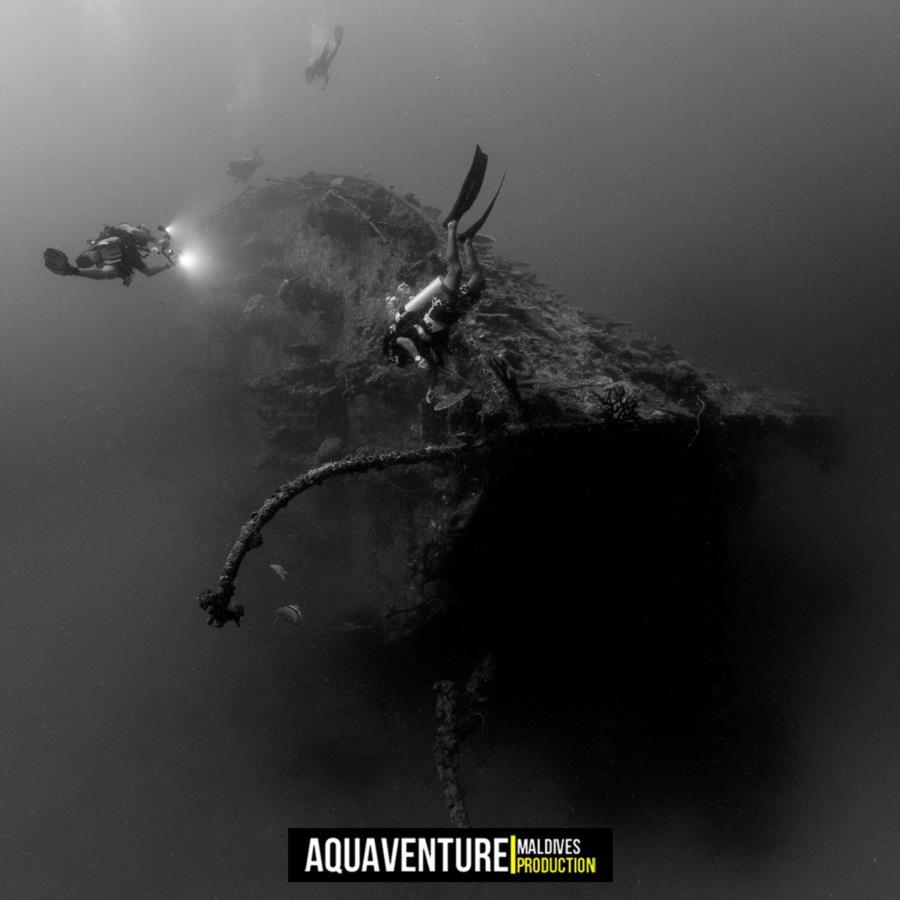 British Loyalty Wreck - British Loyalty Wreck - Aquaventure Maldives