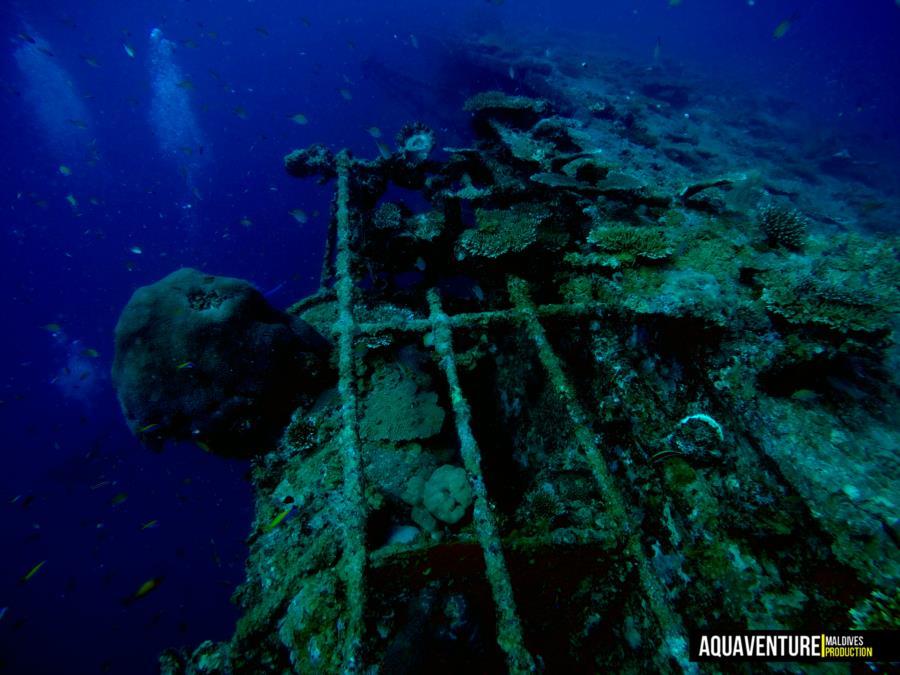British Loyalty Wreck - British Loyalty Wreck