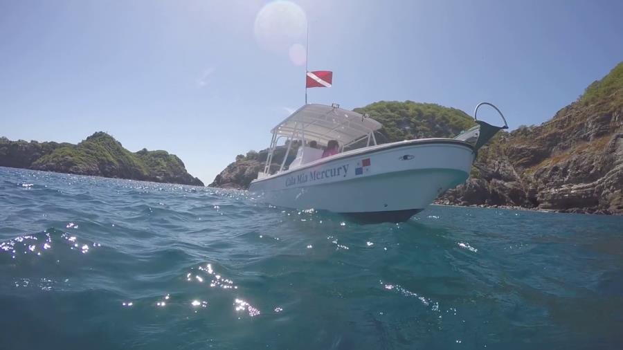 Inside Ladrones Dive - Dive Boat Venus