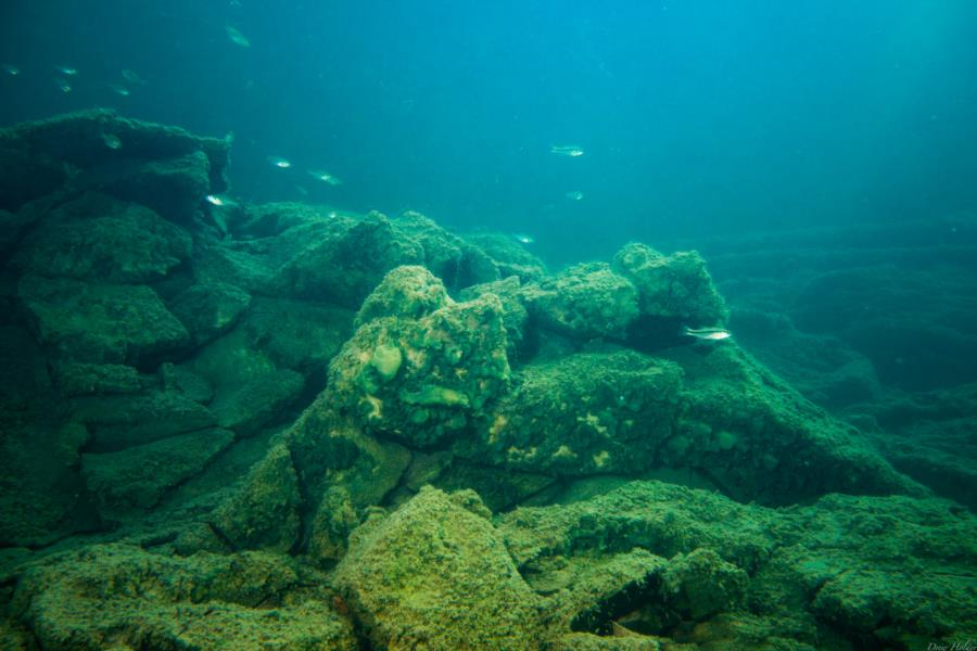 Crystal Lake - Quarry Bottom