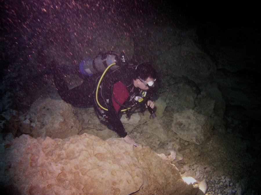 Devil's Den Springs (Devils Den) - Diving the Den