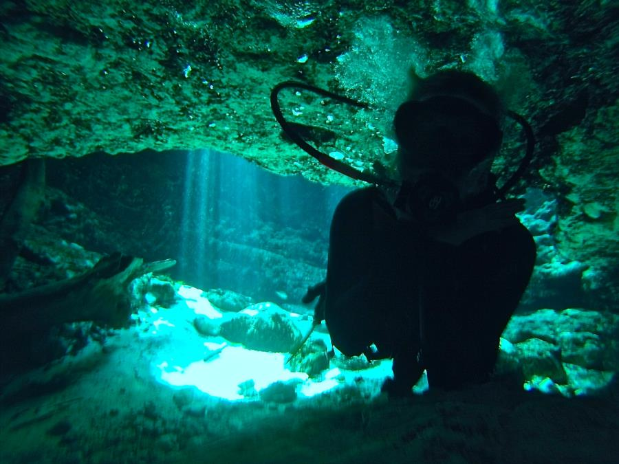 Ginnie Springs - Cave entrance