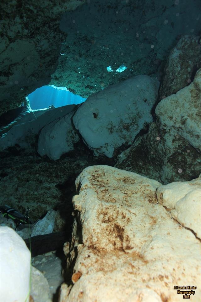 Ginnie Springs - Exiting the cave via the Eye