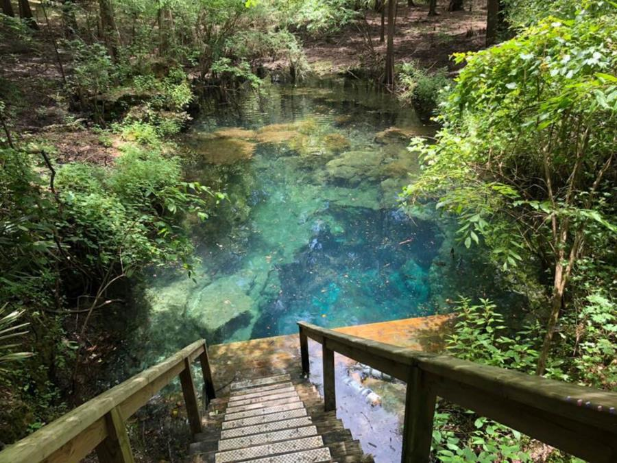 Cow Spring - Cow Springs NSS-CDS