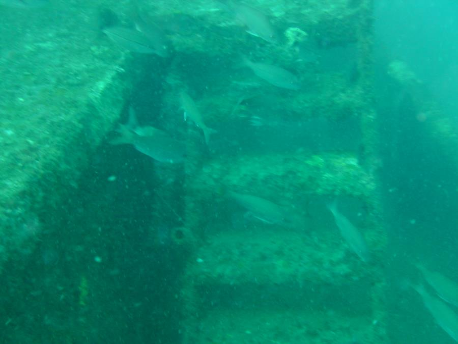 Pete Tide II - Port stairway