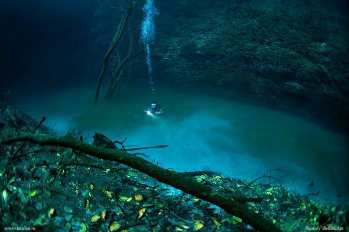 Cenote Angelita - Cenote Angelita - First 100 feet