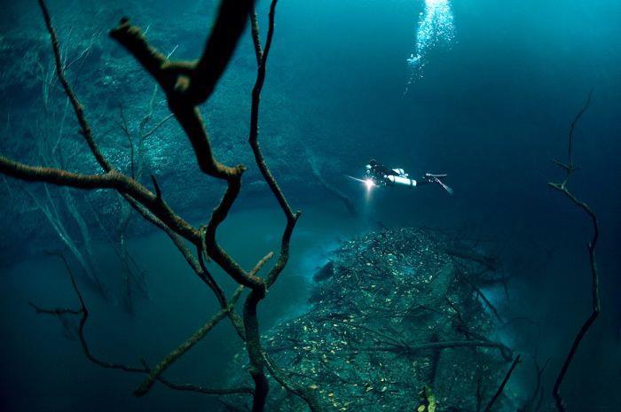 Cenote Angelita - Cenote Angelita - Surreal View
