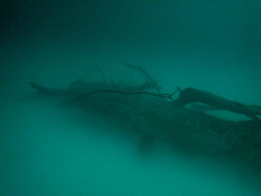 Cenote Angelita - Logs in the cloud