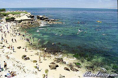 La Jolla Cove - La Jolla Cove