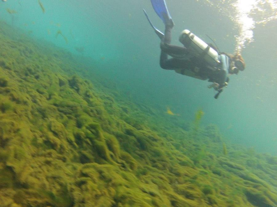 First time in sidemount