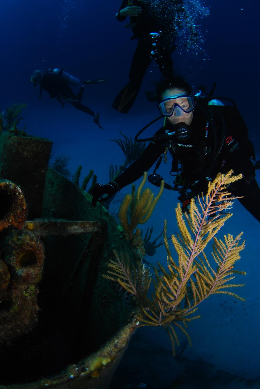 Wreck diving Bahamas