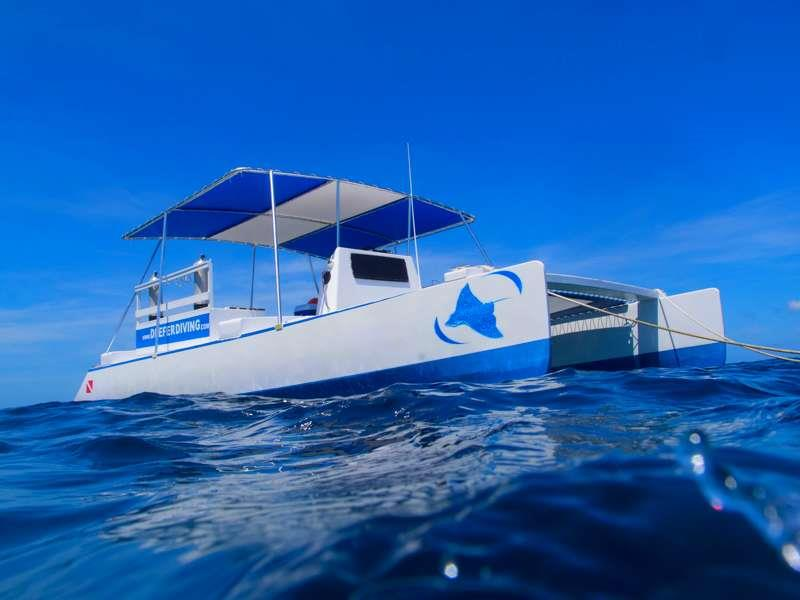Deefer Diving Dive Catamaran Bobcat