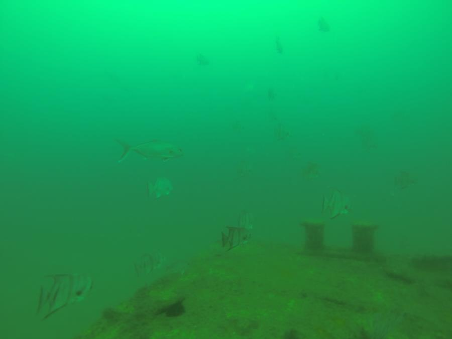 3 coal Barges Pensacola
