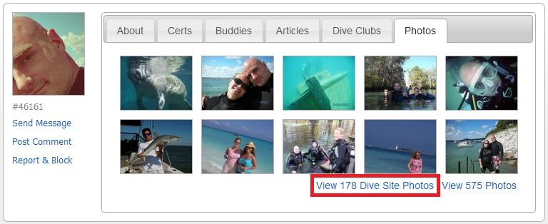 New link added to your profile - view dive site photos