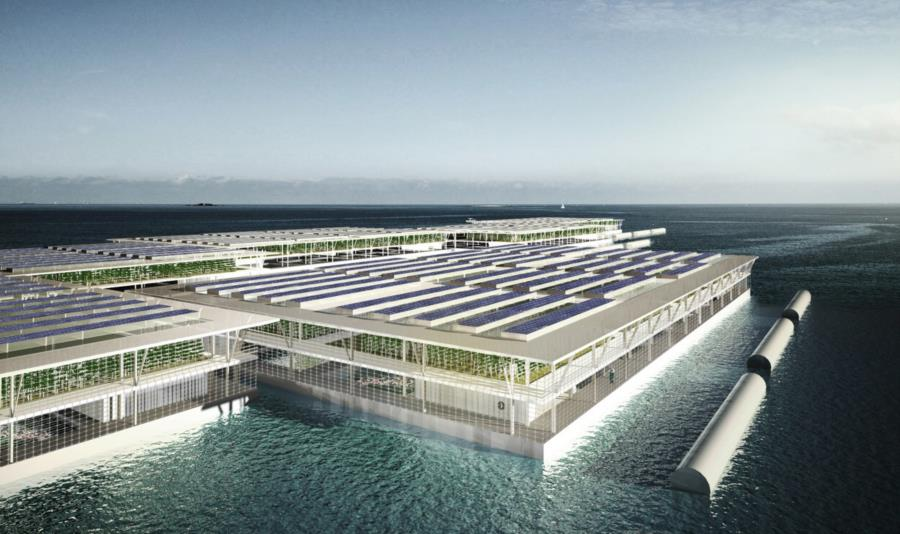 Floating Farms with Solar