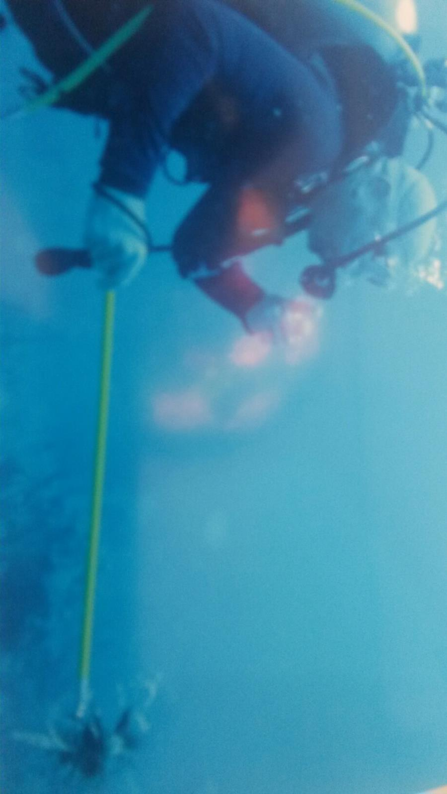 Spear fishing on the Dominicus reff