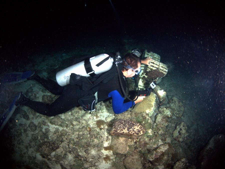 Cozumel Scuba Club Night Dive 4