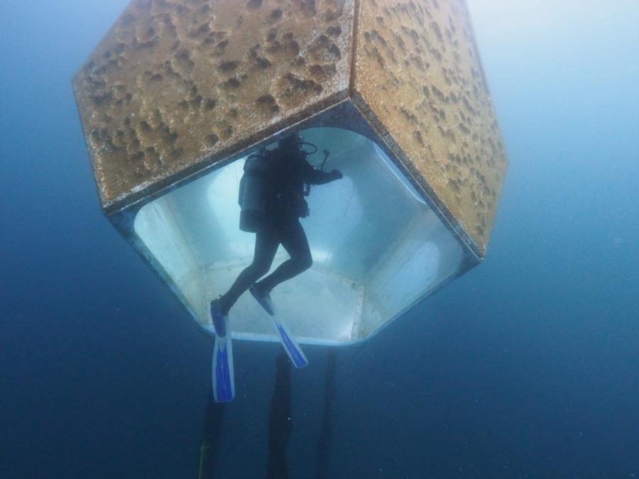 Diver Inside Underwater Scupter 2