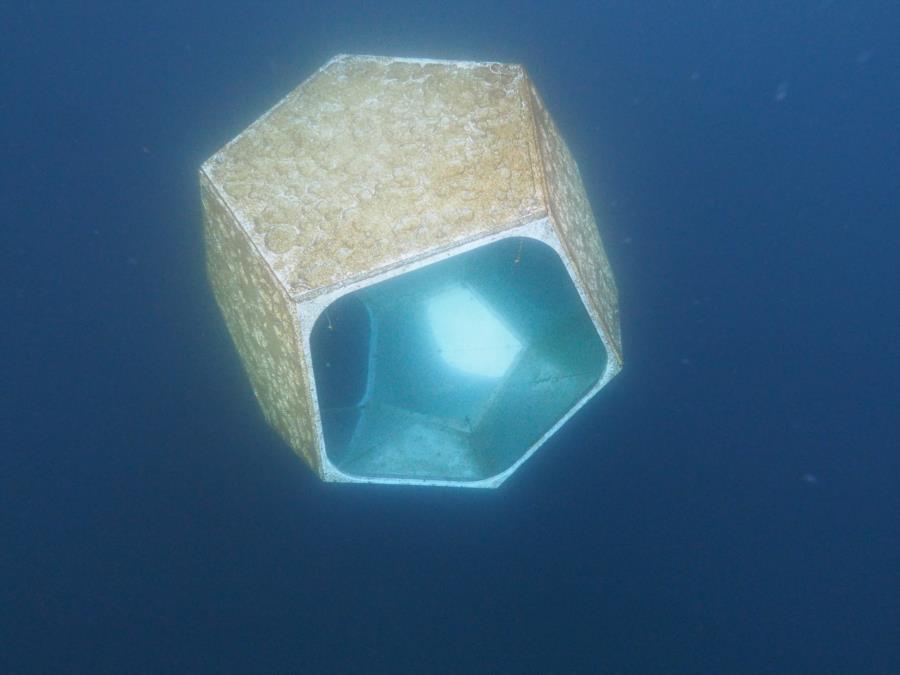 Diver Inside Underwater Scupter 3