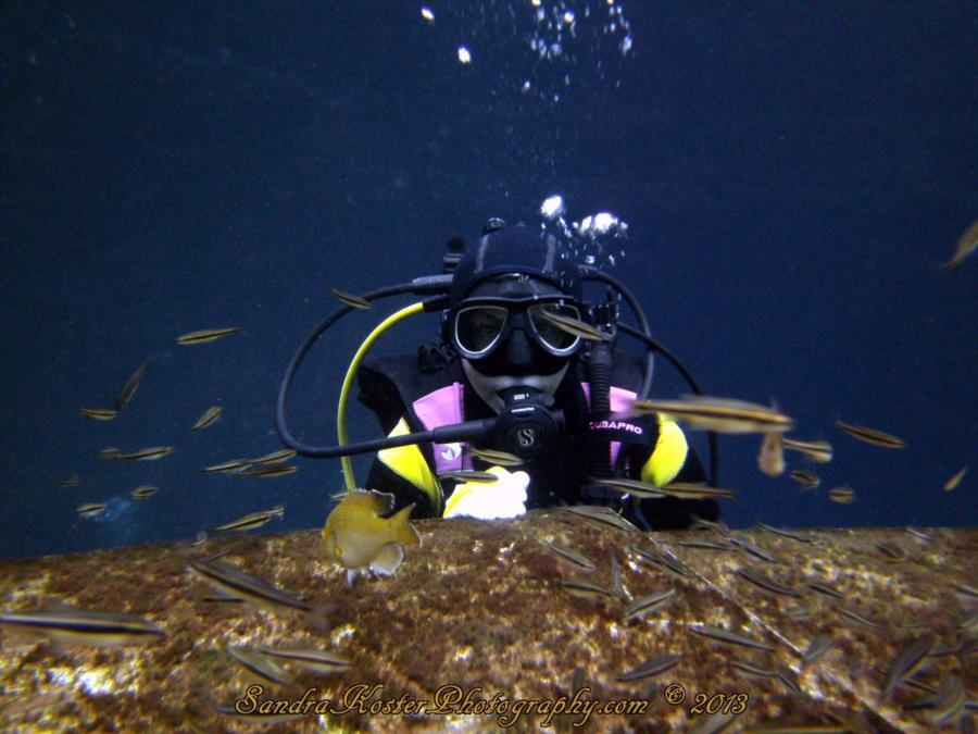 Sandy and the rare minnows 1 at Blue Grotto