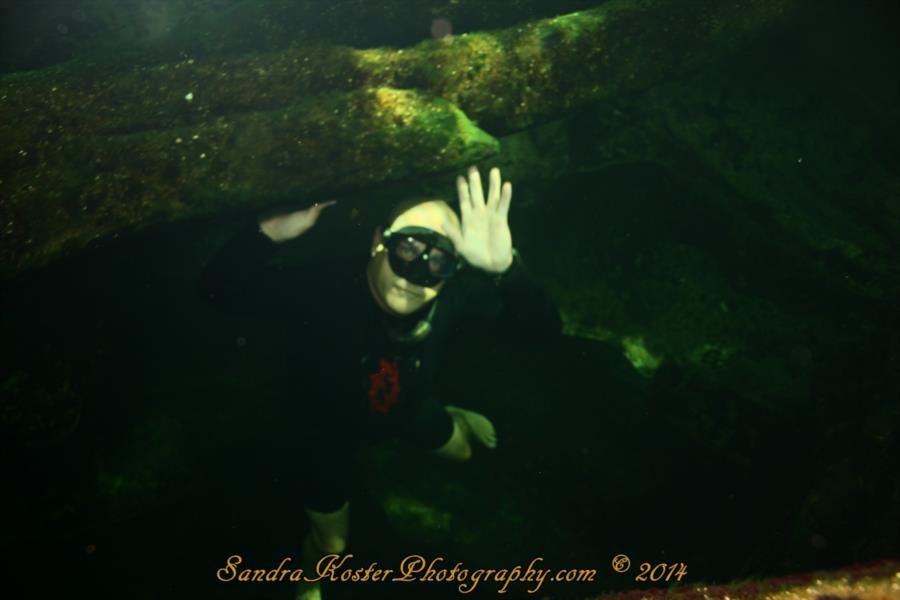 Freediver David Head at Blue Spring State Park 2