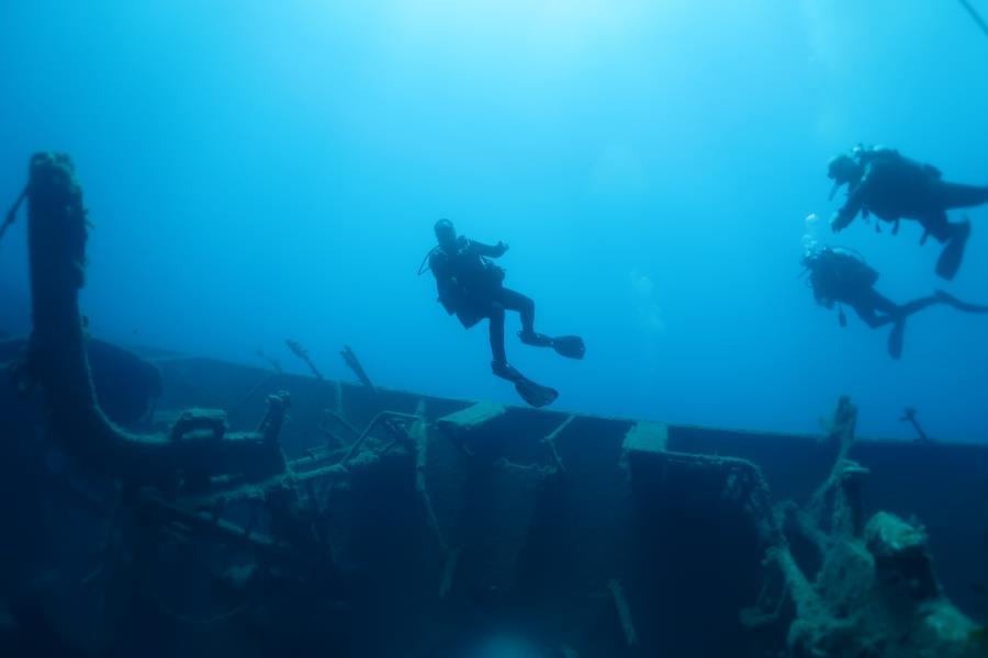 Zenobia ship wreck