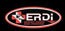 ERDI PSD Logo
