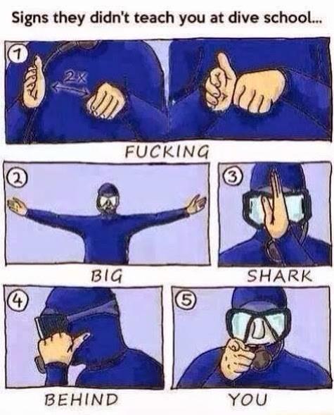 Gotta love a scuba diving joke hahaha