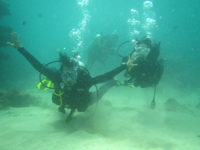 PADI open water licence .. Well i am still a beginner!