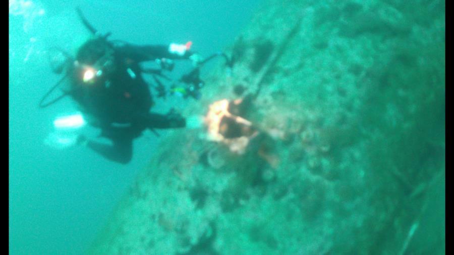U-352(9)