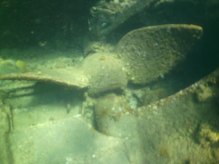 RMS Rhone propeller