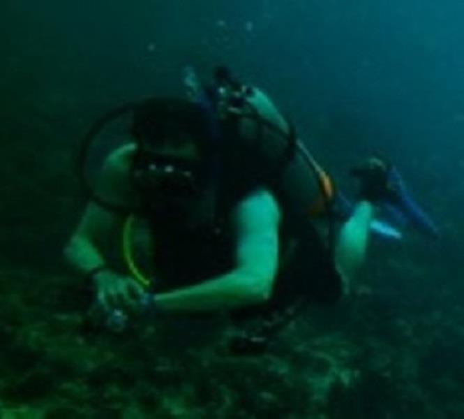 Caribbean diving 2015