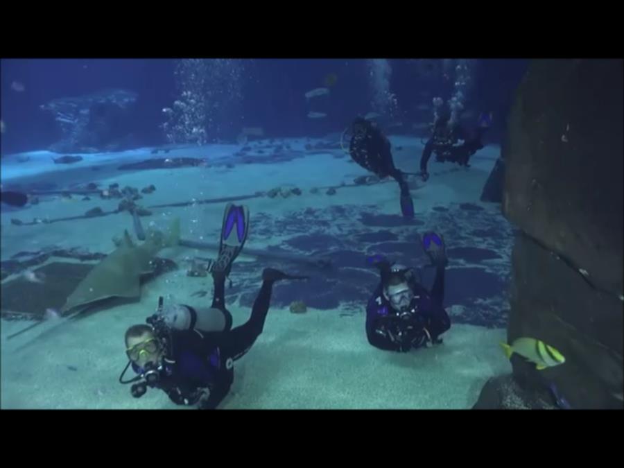 Georgia Aquarium - Nate and I