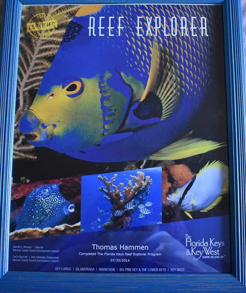 Florida Keys Reef Explorer Poster