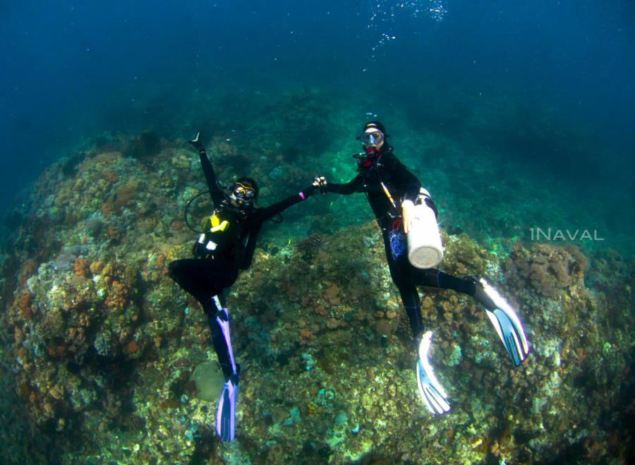 Dive and Selfie Buddy