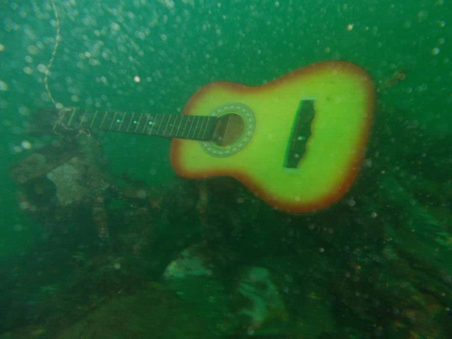 Guitar on the WBug