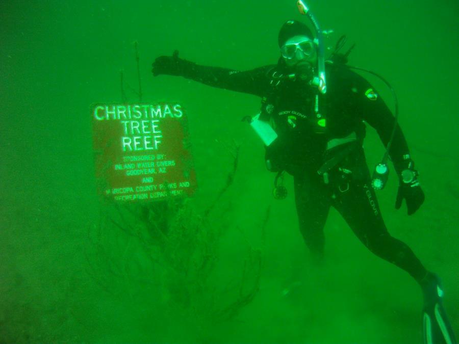 Christmas Tree Reef