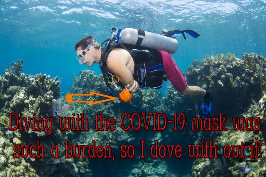 Covid-19 Free Diving